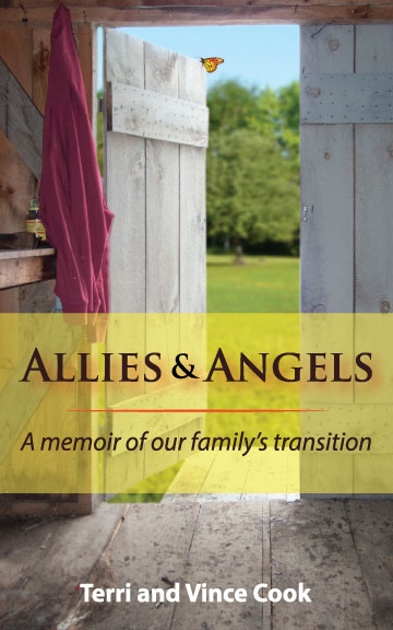 allies_angels_cover